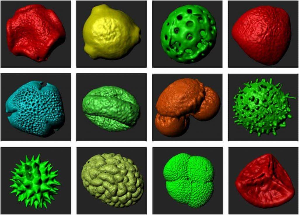 Cómo la impresión 3D sobredimensiona el diminuto mundo del polen