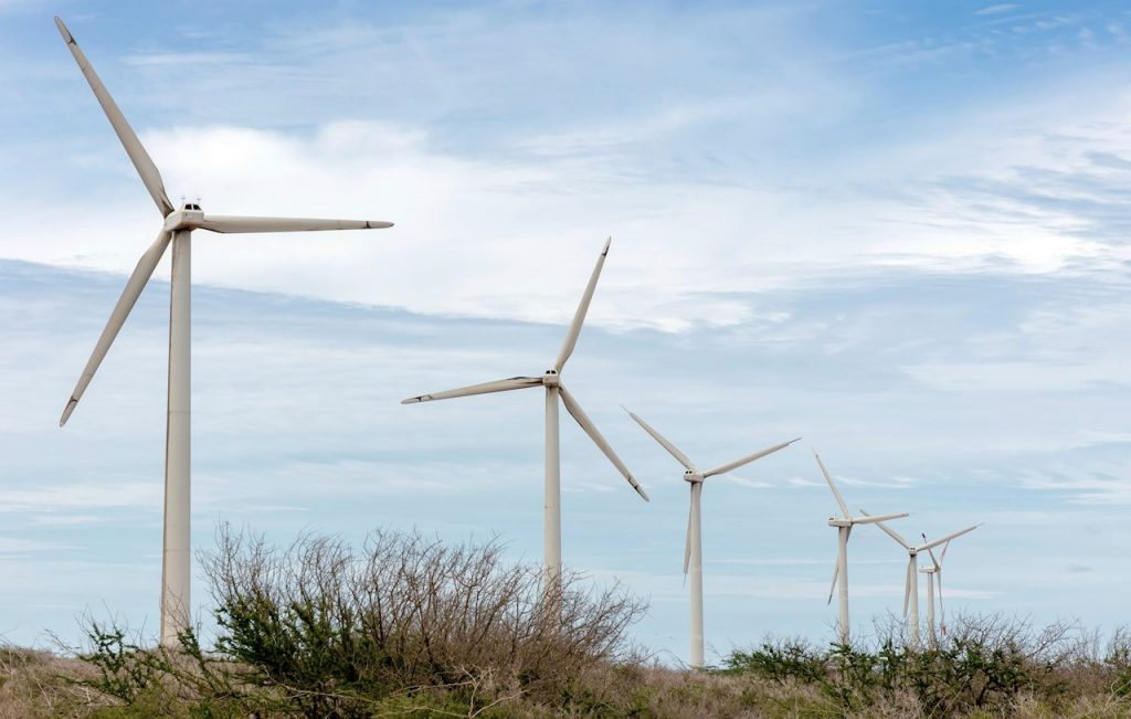 El plan verde de recuperación global no está al nivel de los estímulos acordados en 2008