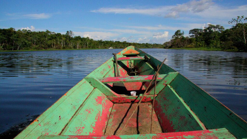 La construcción de una economía ecológica salvaría al Amazonas de una 'pesadilla'