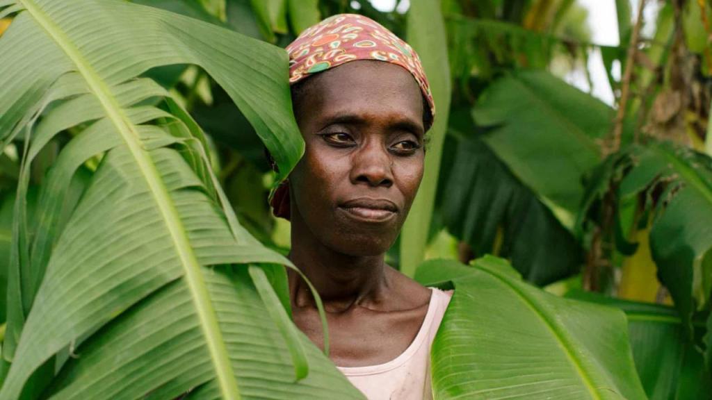 'El nivel del mar crece y el clima cambia': lecciones del ciclón de Mozambique