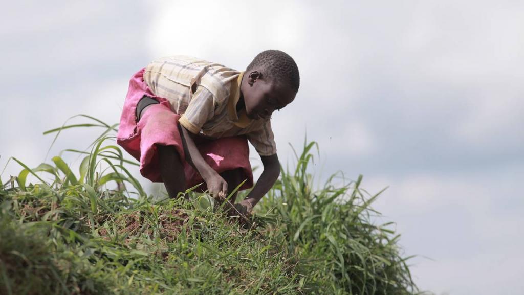 Explotación infantil, fugas tóxicas: el precio a pagar por un futuro más verde