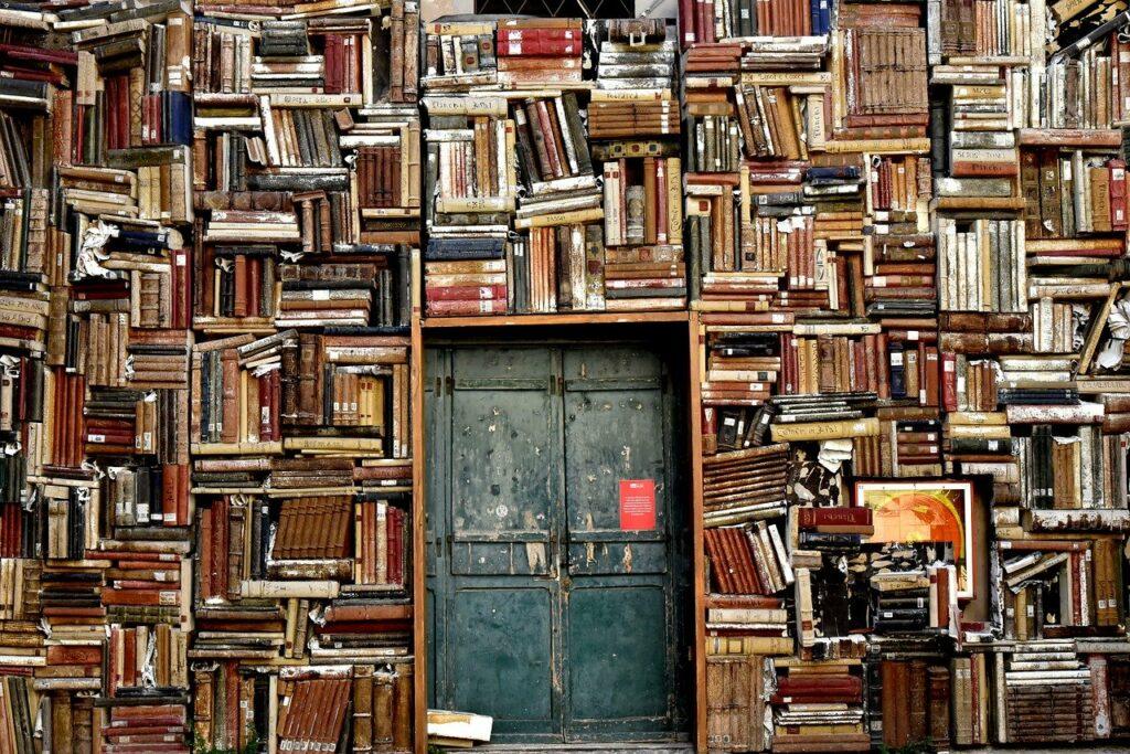 Libros libres, libres entre libros
