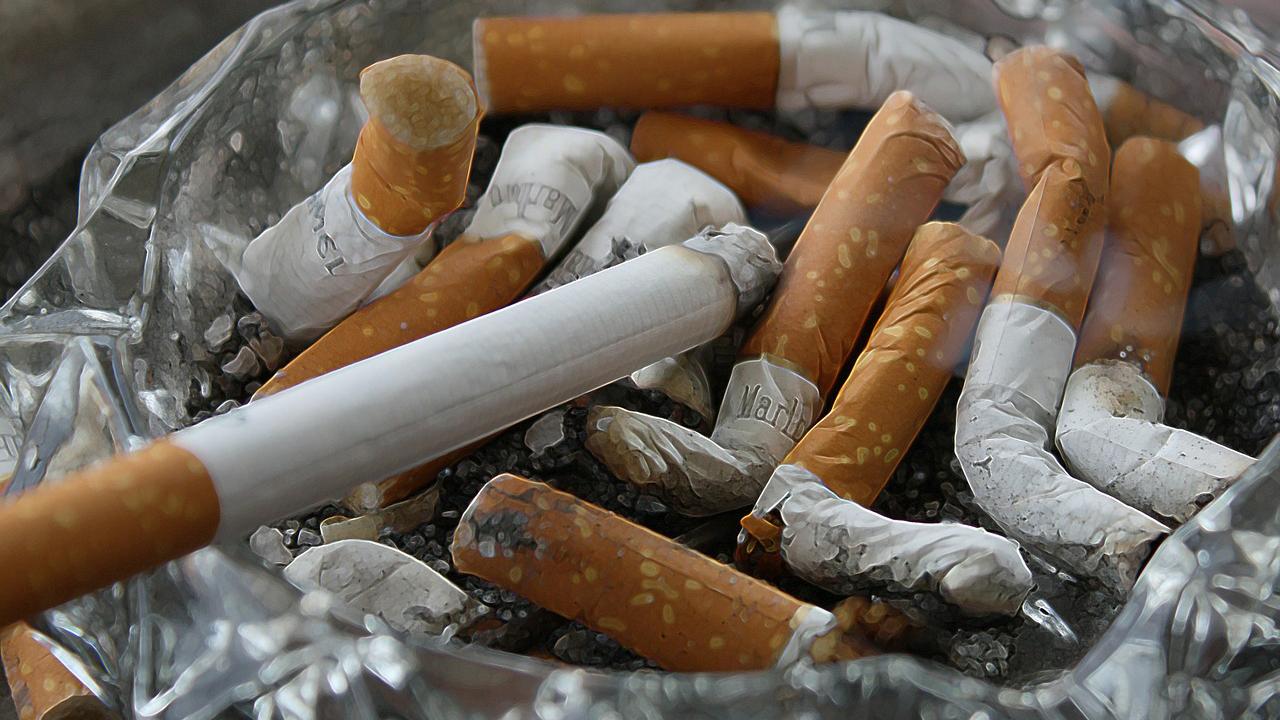 cigarro fumar