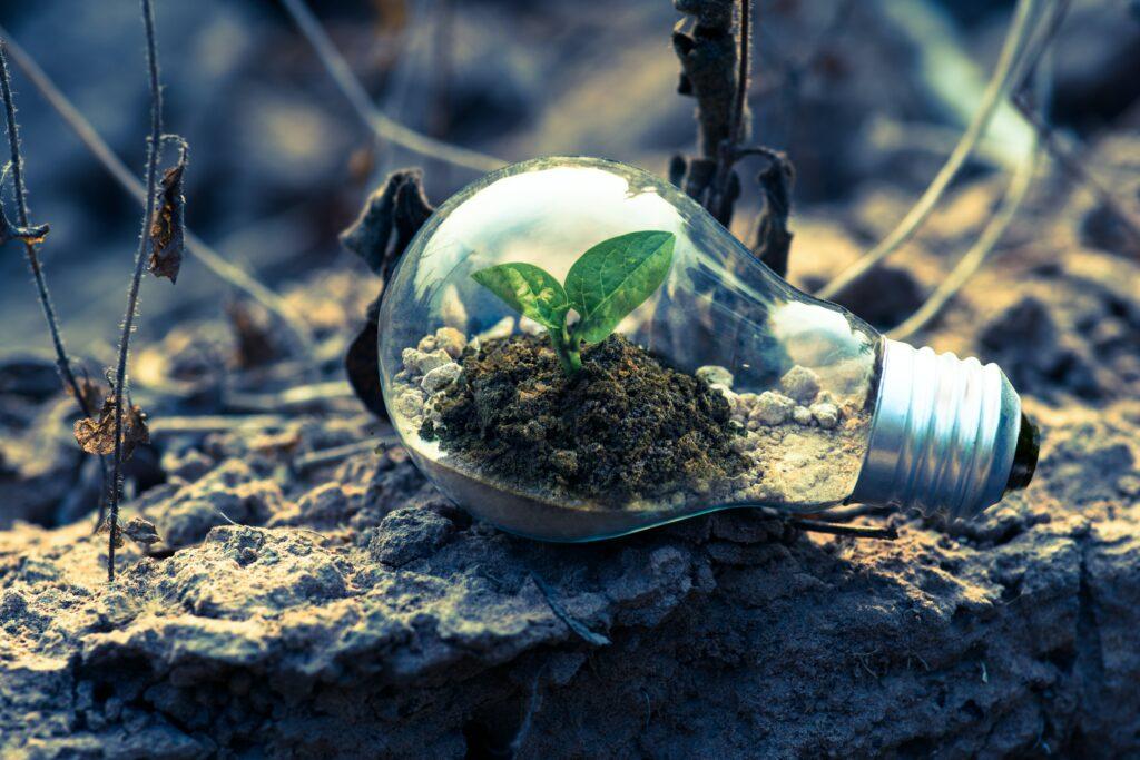 Para la ONU, la reactivación economía mundial está lejos de ser verde