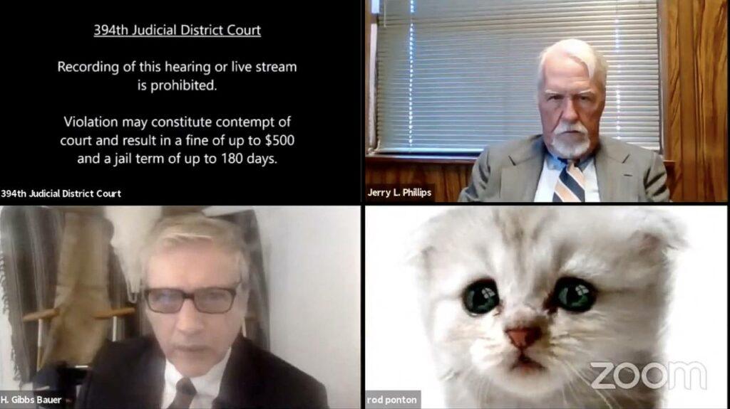 'No soy un gato': abogado texano le dice a un juez que no puede quitar su filtro de Zoom