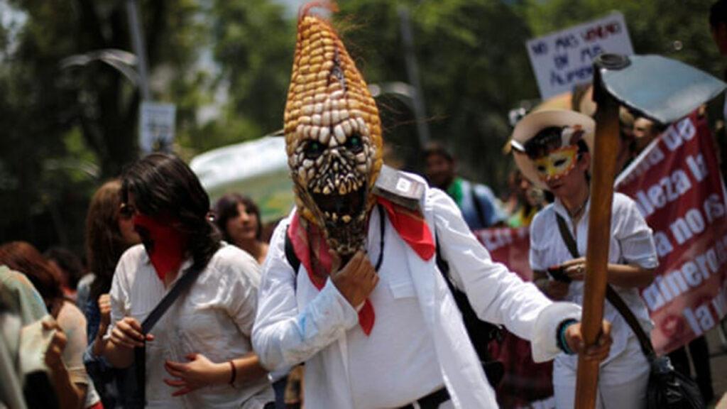 Monsanto y autoridades de EU presionaron a México para eliminar la prohibición al glifosato