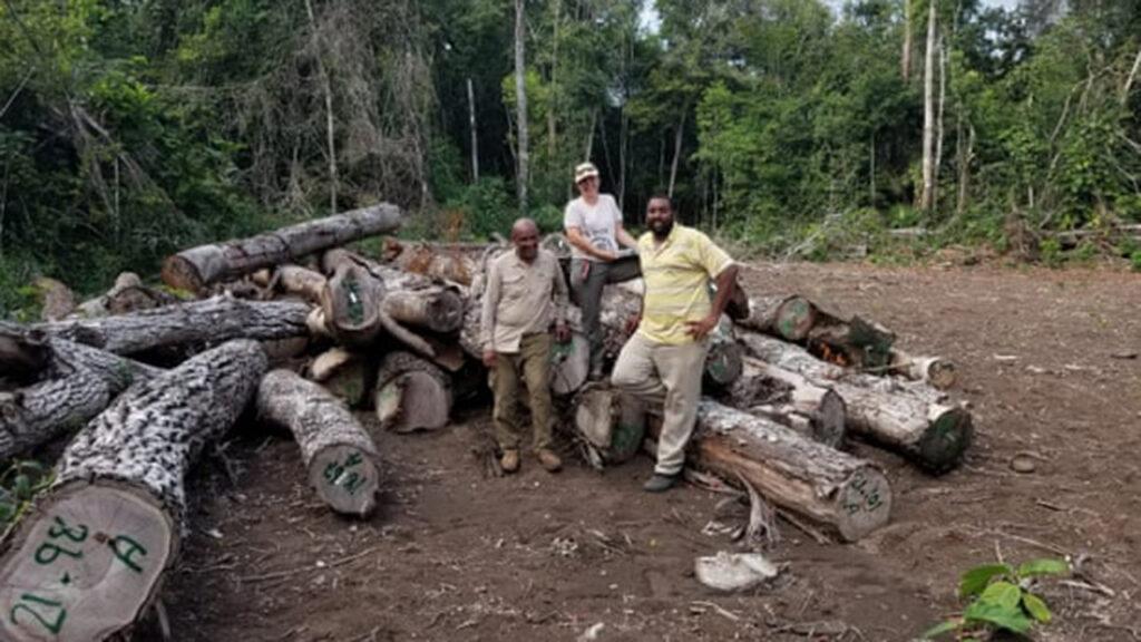 Ecologistas le compran bosques a Belice para protegerlo 'a perpetuidad'
