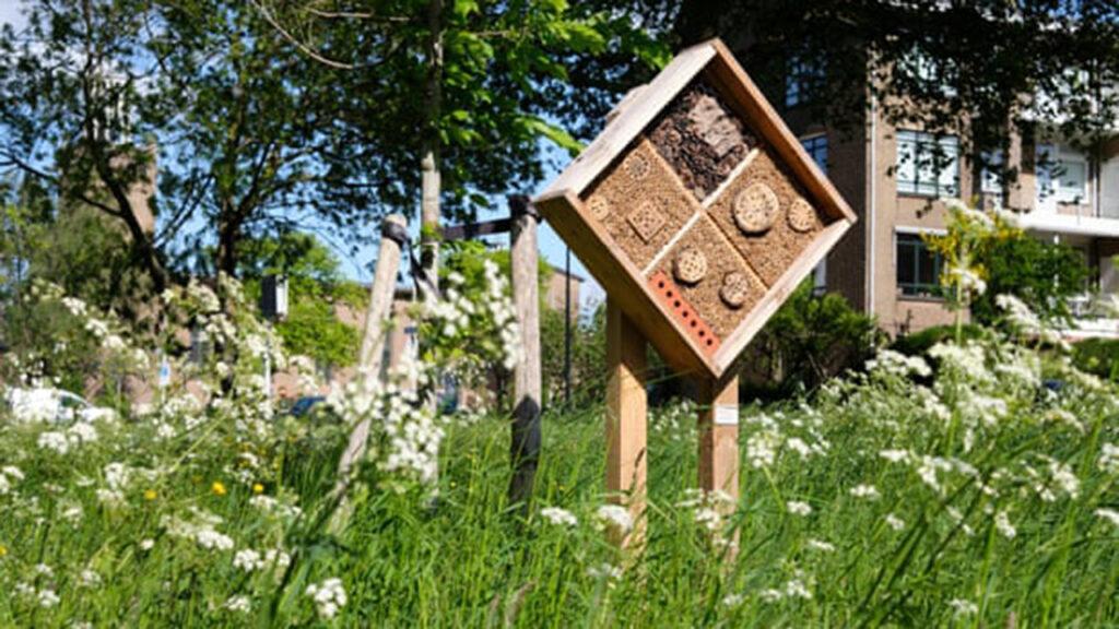 La población de abejas de Holanda se mantiene gracias a la estrategia de polinización