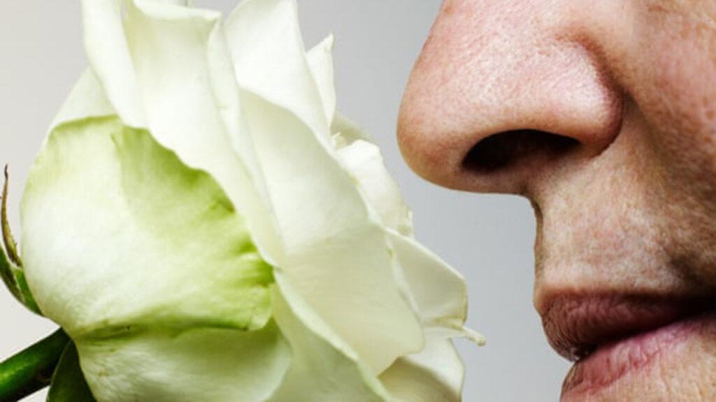'Entrenar el olfato' se recomienda a los pacientes de Covid con anosmia