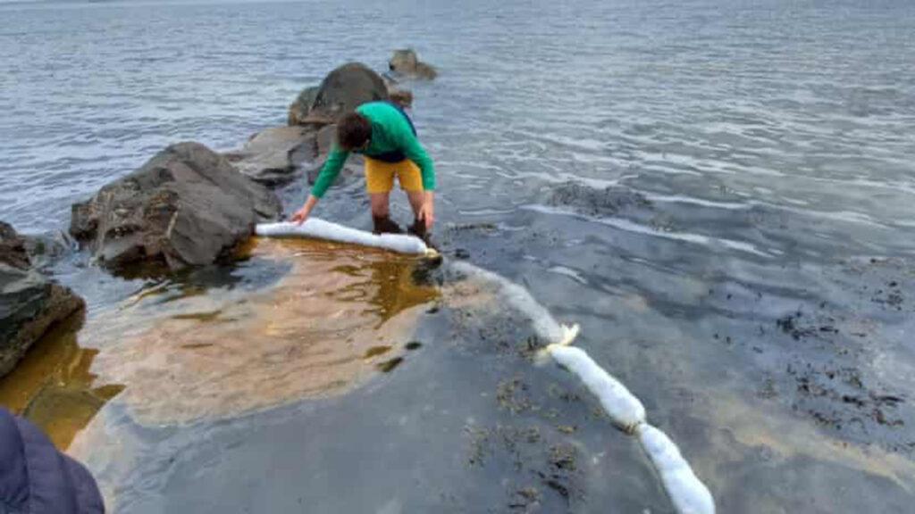 Reciclan cabello de salones de belleza para limpiar los derrames de petróleo en las orillas del mar