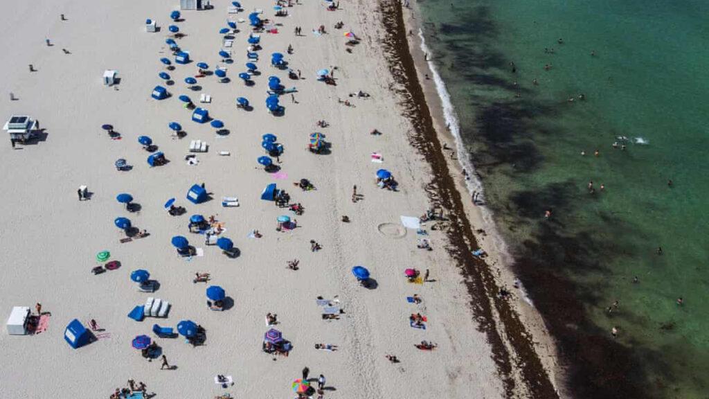 La directora de calor de Miami pide acción sobre el 'asesino silencioso' en la crisis climática