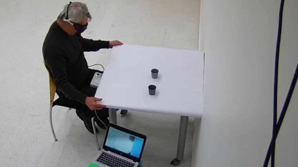 Un hombre ciego recuperó la vista con una terapia genética