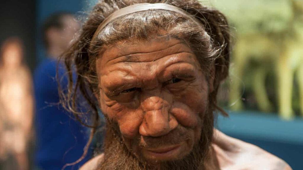 Pequeños rastros de ADN encontrados en el polvo de una cueva pueden revelar la vida secreta de los neandertales