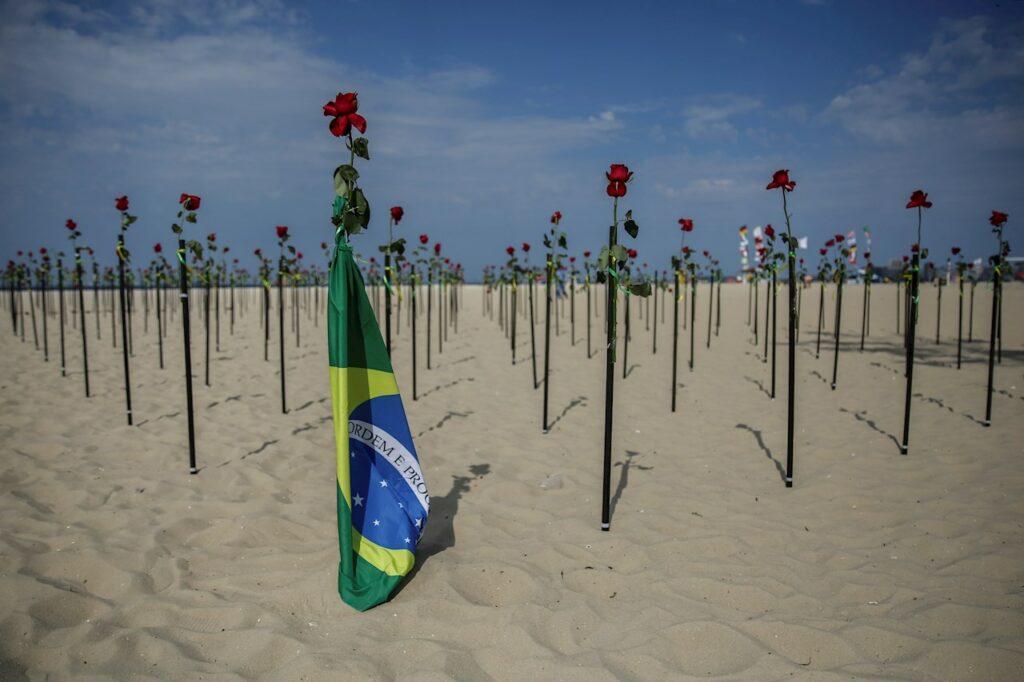 Cientos de rosas rojas honran a los 500 mil fallecidos por Covid-19 en Brasil