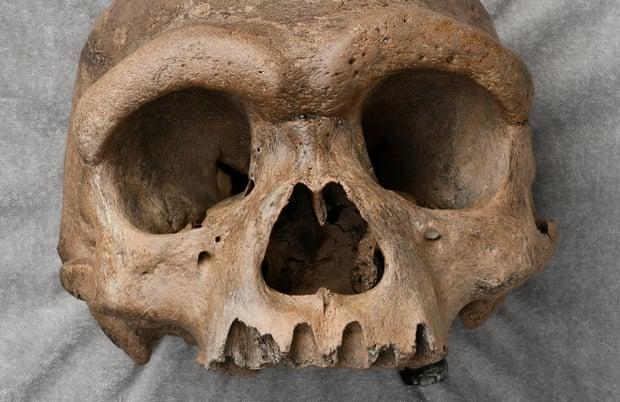 Una cabeza humana masiva descubierta en un pozo en China hace que los científicos reconsideren  la evolución