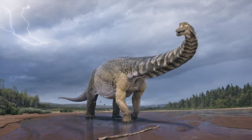 Se confirma una nueva especie de dinosaurio en Australia