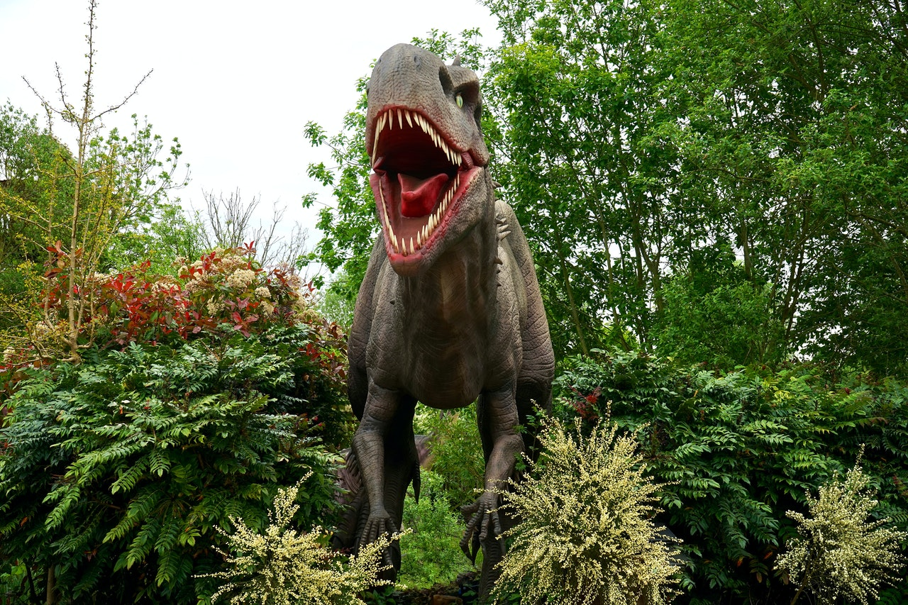 11 especies cobran vida con realidad aumentada en museo de París