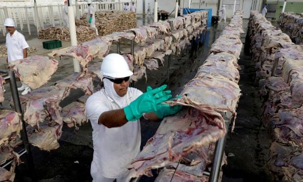 El mayor productor de carne del mundo pagó un rescate de 11 mdd por ciberataque