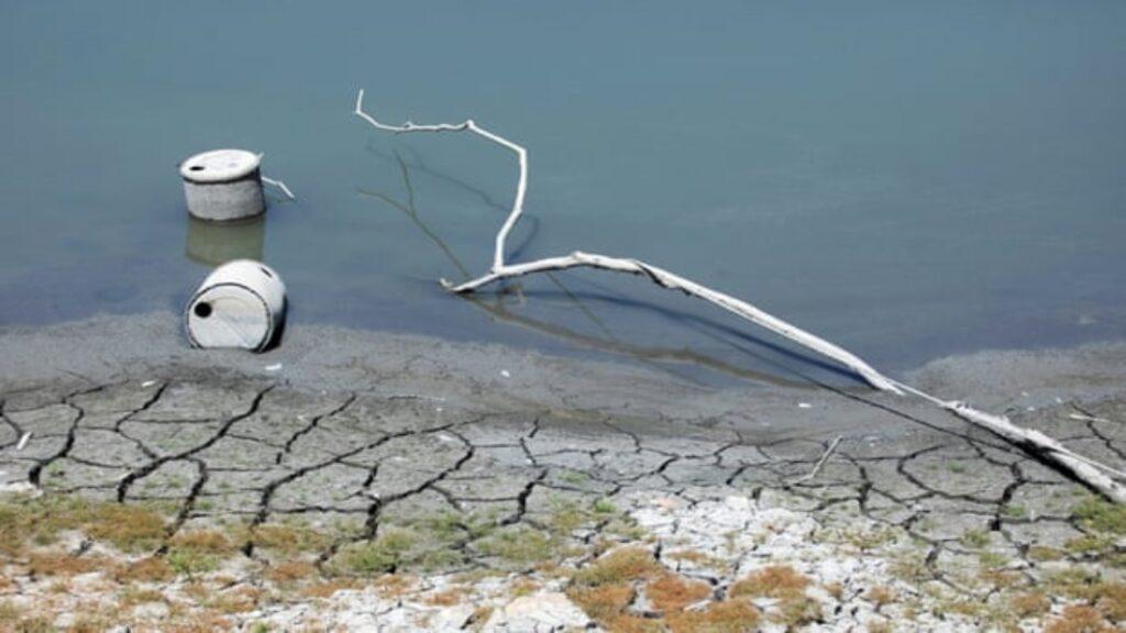 'La siguiente pandemia': la sequía es una crisis global escondida, dice la ONU