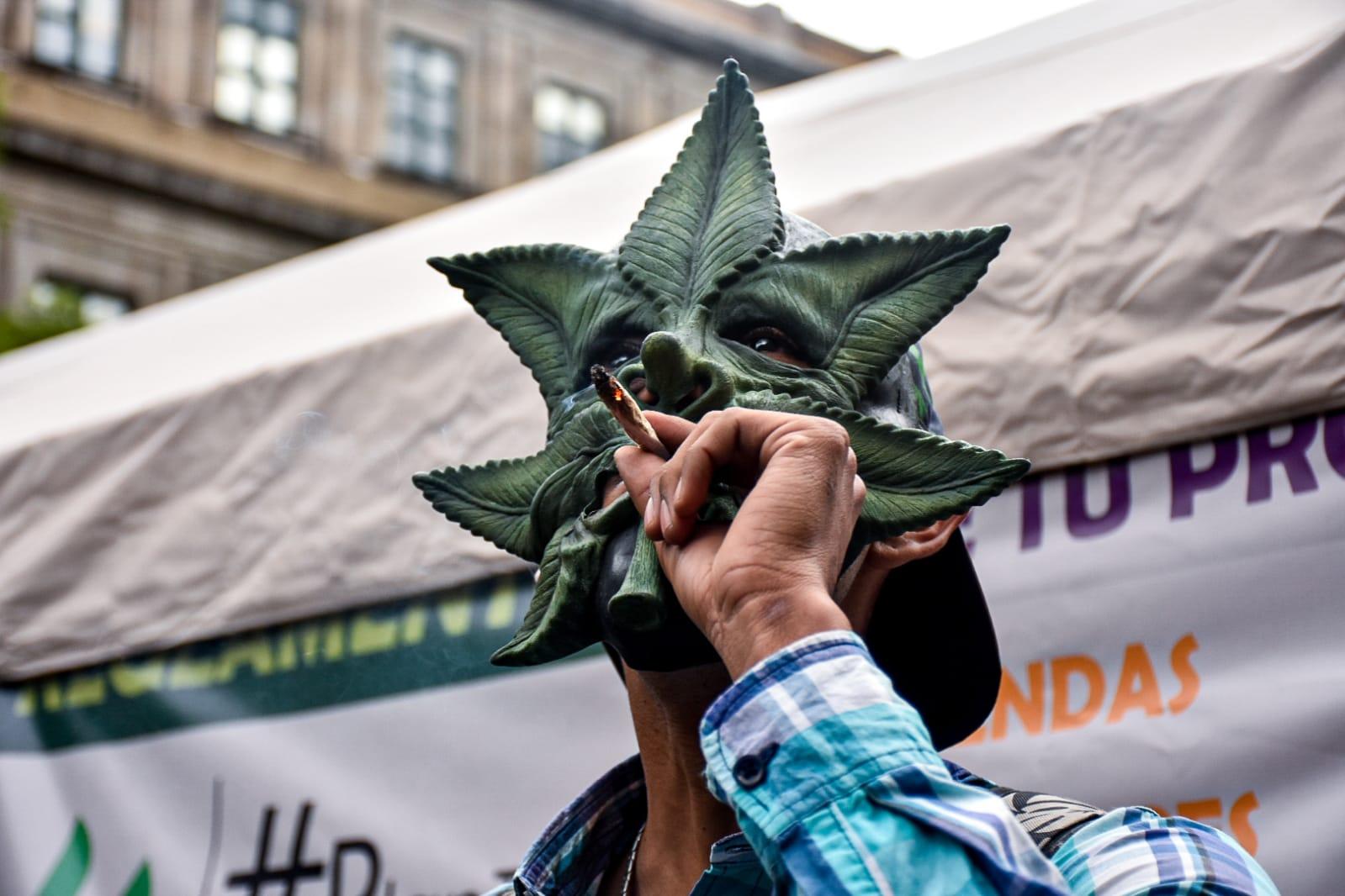 Uso lúdico de la marihuana en México