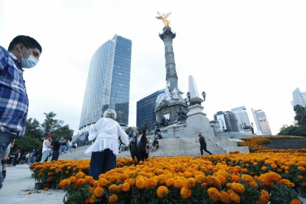 Festival de la flor de cempasúchil en CDMX: sedes, horarios fecha…