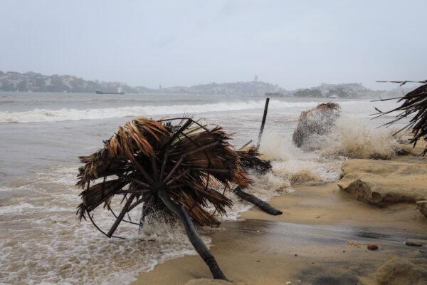 'Rick' toma fuerza y se convierte en huracán categoría 1; Meteorológico alerta por lluvias
